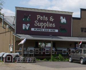 Berlin Pets : Tis The Season Christmas Shoppe : Ohio's largest year